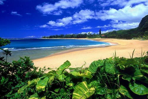 hawaii_kayai